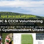 Expat Press-Volunteering and Tree Planting Event in Hungary for Children